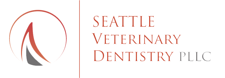 Seattle Veterinary Dentistry